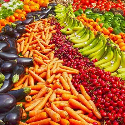 secteur-agriculture